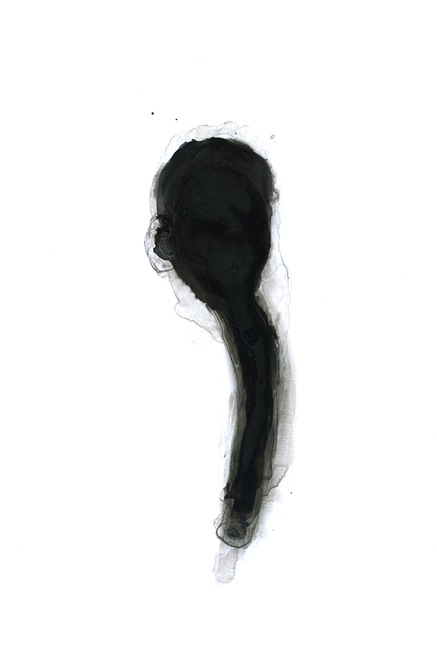 Nicole Panneton - Singularité - Action Art Actuel - Dessin - Encre et graphite - 2014