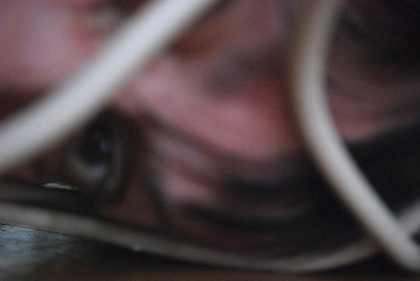 Nicole Panneton - Soigner l'âme - Action performative - Résidence de création - Action Art Actuel - Saint-Jean-sur-Richelieu - Crédit photographique Nicole Panneton - 2014