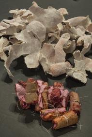 Nicole Panneton - Artéfacts de mon quotidien - Aliments séchés et colorés - Projet Des mailles et des mots - 2015 - Crédit photographique Michel Dubreuil